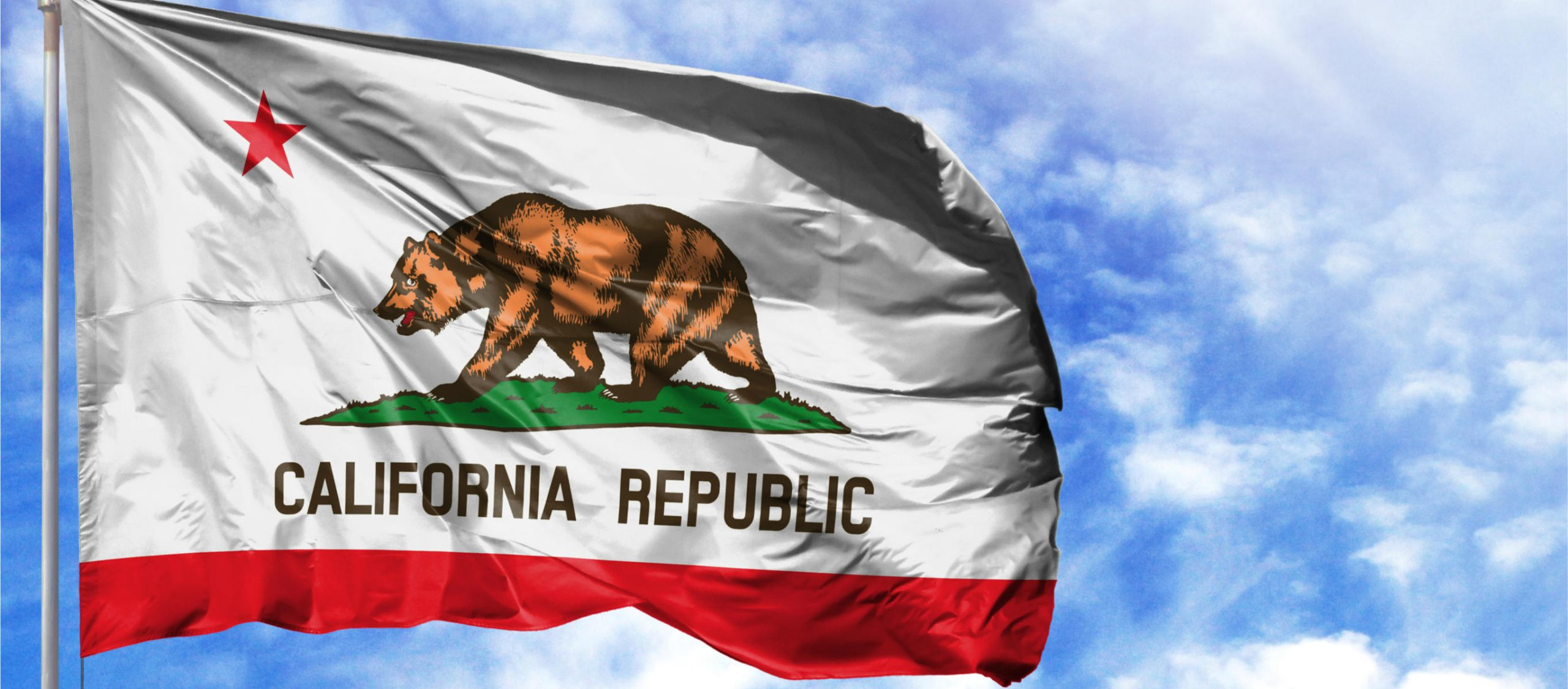 beispiellose-lobbyarbeit-erzielt-grosen-gewinn-fur-das-kalifornische-offentliche-gesundheitswesen