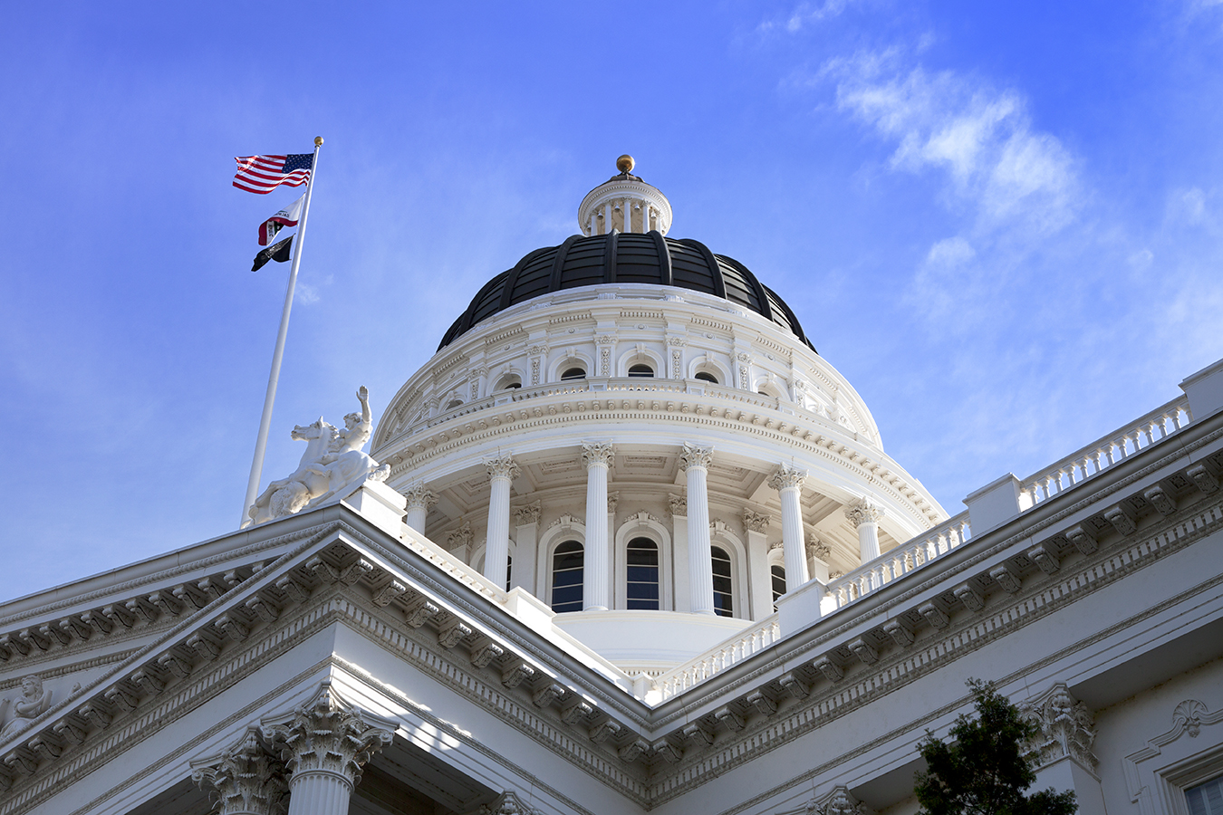 beispiellose-lobbyarbeit-erzielt-grosen-gewinn-fur-das-kalifornische-offentliche-gesundheitswesen-2